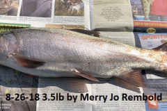 8-26-18 3.5lb by Merry Jo Rembold