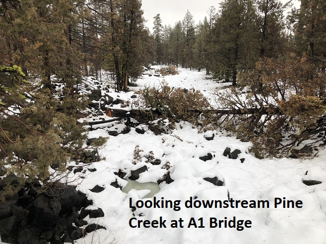 1-20-19 looking downstream Pine Creek at A1 Bridge