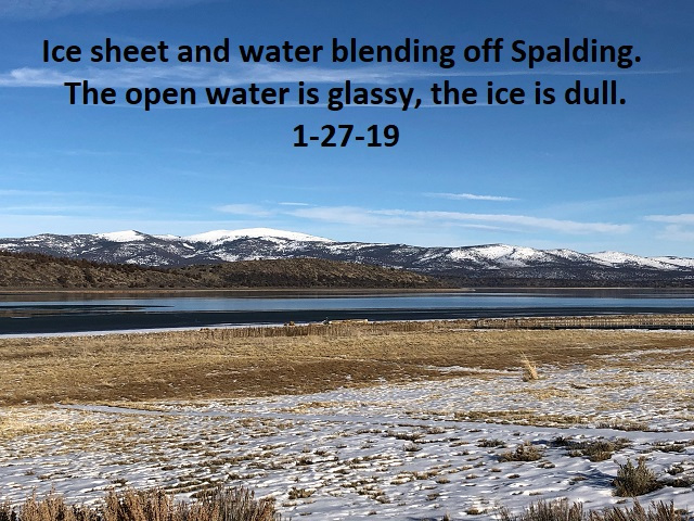 1-27-19 Ice and water blending off Spalding