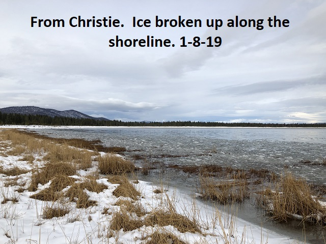 1-8-19 Ice broken up along the shoreline at Christie