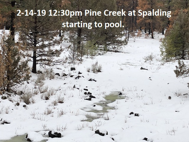 2-14-19 Pine Creek at Spalding 1230pm