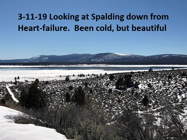 3-11-19 Looking down at Spalding from Heart failure