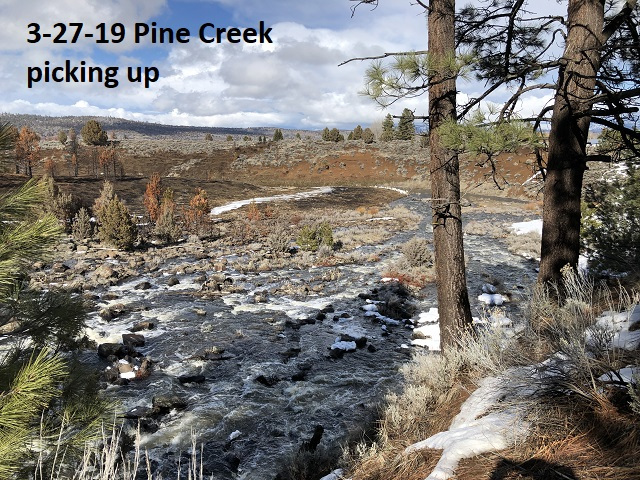 3-27-19-Pine-Creek-picking-up