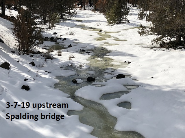 3-7-19 upstream Spalding bridge