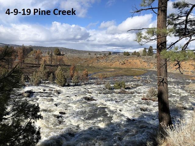 4-9-19-Pine-Creek