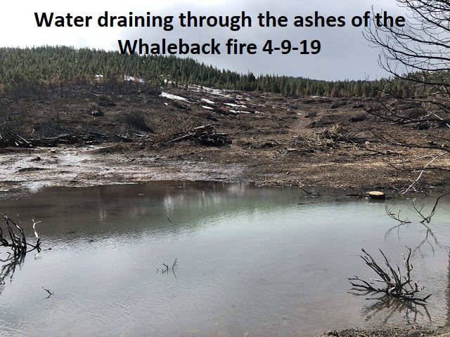 4-9-19-Snowmelt-draining-thru-the-ashes-left-from-Whaleback-fire