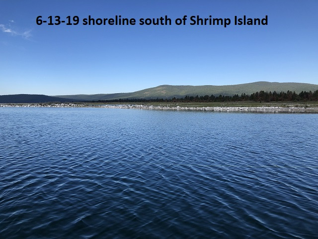 6-13-19-shoreline-south-of-Shrimp-Island-Lake-of-the-Woods
