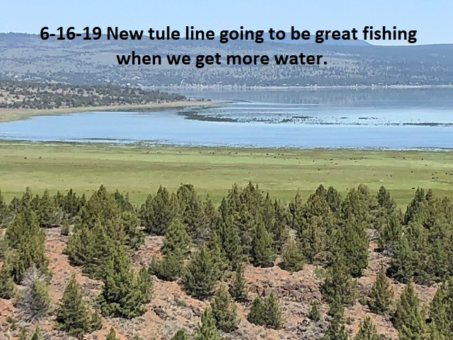 6-16-19-north-basin-new-tule-line-going-to-be-great-fishing-one-day