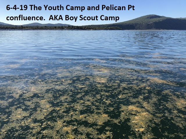 6-4-19-Youth-Camp-confluence-at-Pelican-Pt