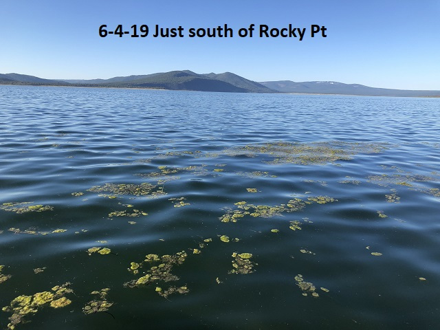 6-4-19-just-south-of-Rocky-Pt
