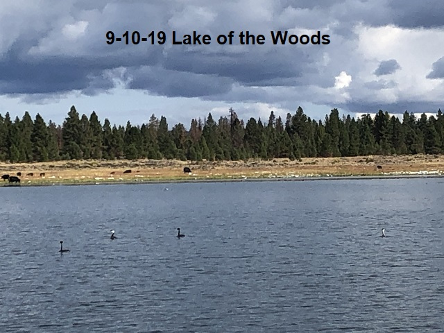 9-10-19-Lake-of-the-Woods