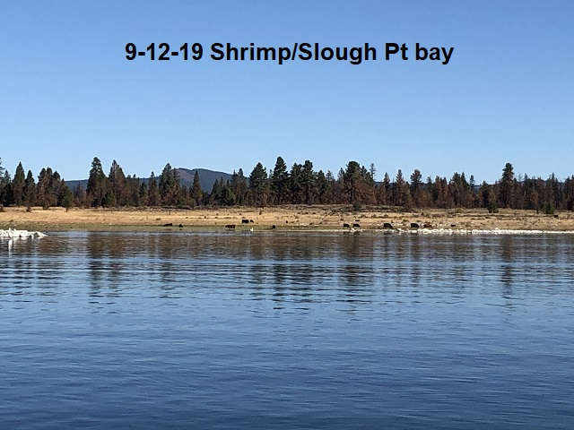 9-12-19-Shrimp-Island-Slough-Pt-bay