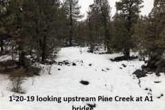 1-20-19 looking upstream Pine Creek at A1 Bridge