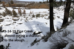 3-14-19 Pine Creek almost cutting a channel to the slough
