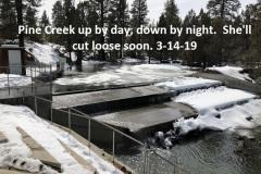 3-14-19 Pine Creek