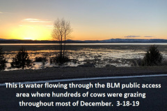3-18-19 water flowing through BLM cattle grazing area thru December