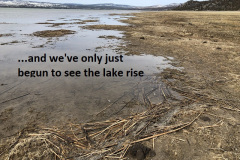 3-19-19 and we've only just begun to see the lake rise