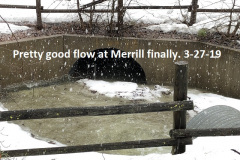3-27-19-Pretty-good-flow-at-Merrill-Creek-now