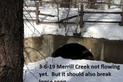 3-6-19 Merrill Creek not flowing yet
