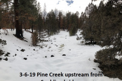 3-6-19 Pine Creek looking upstream from Spalding bridge