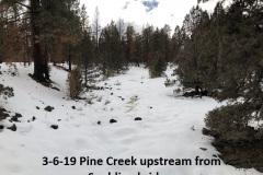 3-6-19 Pine Creek looking upstream from Spalding bridge