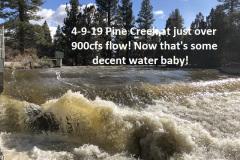 4-9-19-Pine-Creek^