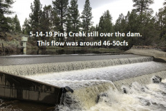 5-14-19-Pine-Creek