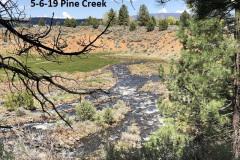 5-6-19-Pine-Creek^