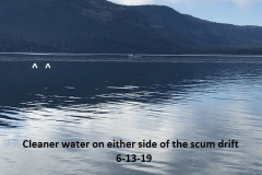 6-13-19-Cleaner-water-on-either-side-of-the-algae-drift