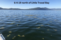 6-4-19-north-of-Little-Troxel-Bay
