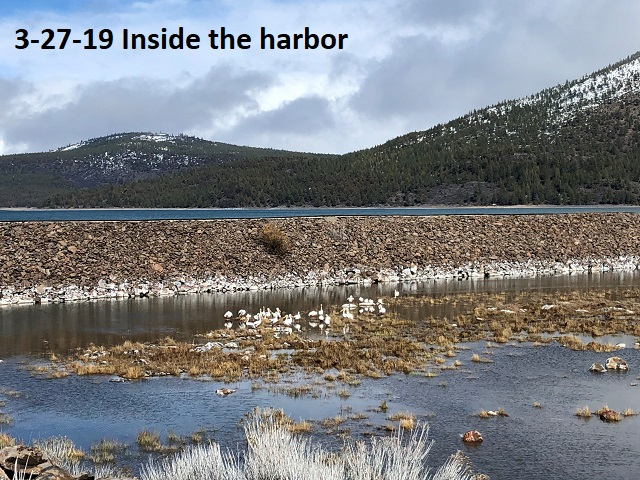 3-27-19-inside-the-harbor