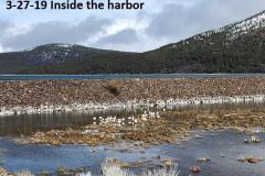 3-27-19-inside-the-harbor