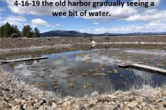 4-16-19-Gallatin-Harbor