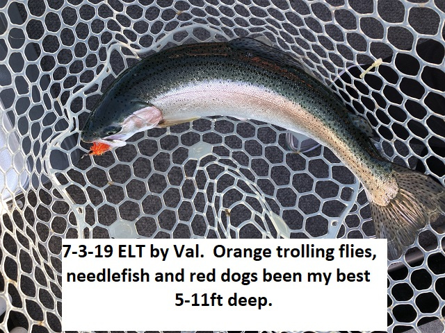 7-3-19-ELT-by-Val