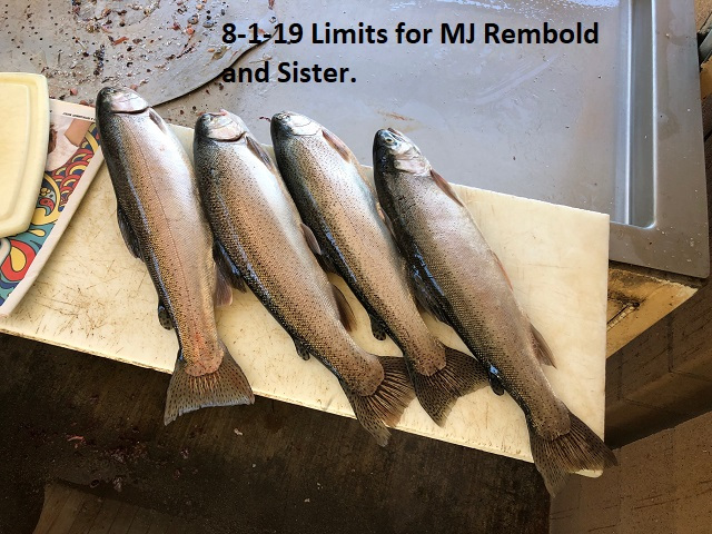 8-1-19-Limits-for-MJ-Rembold-and-Sister