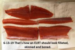 6-13-19-filleted-skinned-and-100-boneless-ELTR