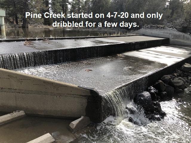 4-8-20-Pine-Creek