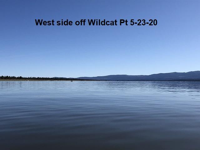 5-23-20-West-side-off-Wildcat