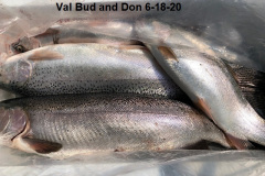6-18-20-Val-Bud-and-Don